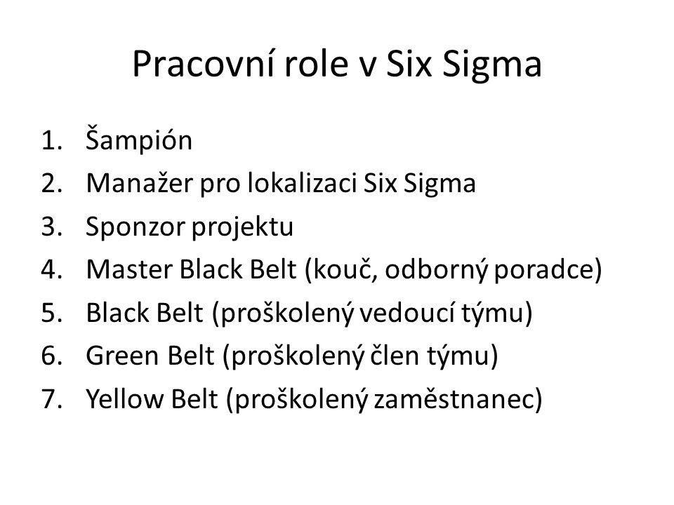 Pracovní role v Six Sigma