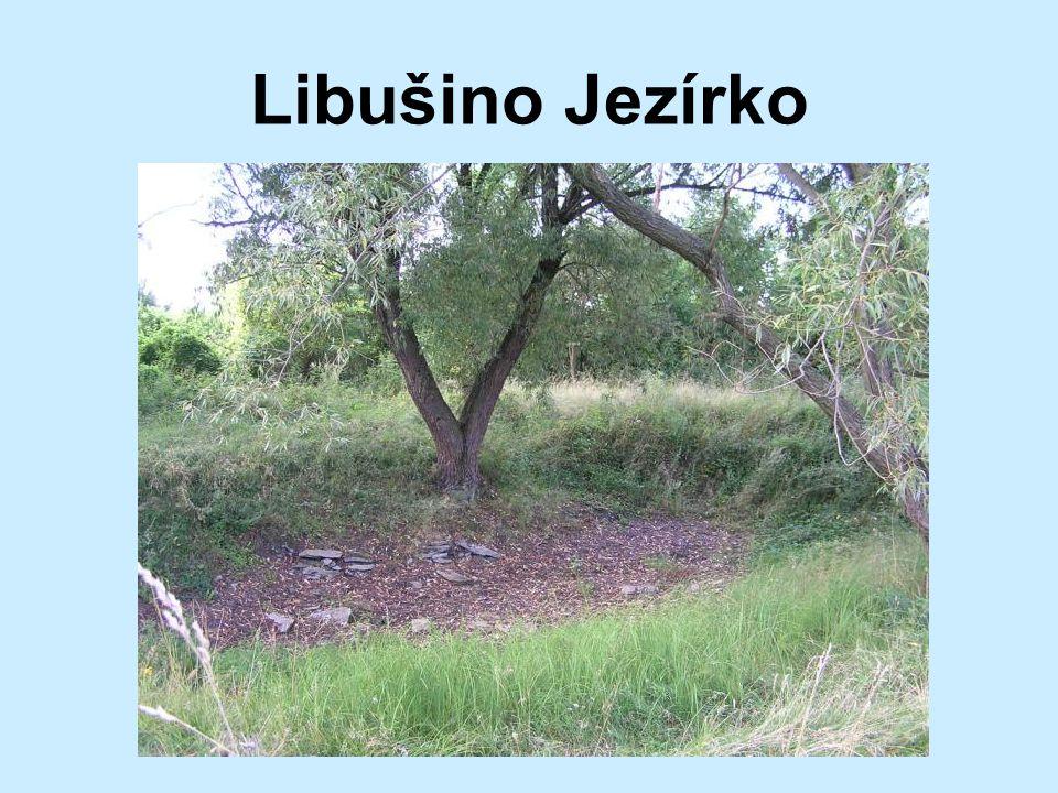Libušino Jezírko