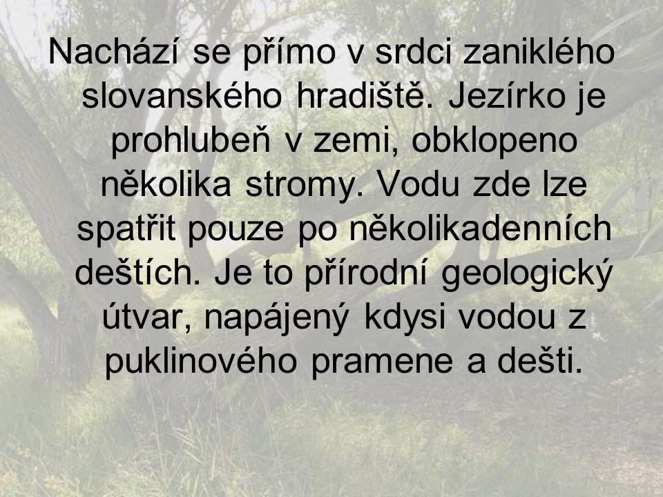 Nachází se přímo v srdci zaniklého slovanského hradiště