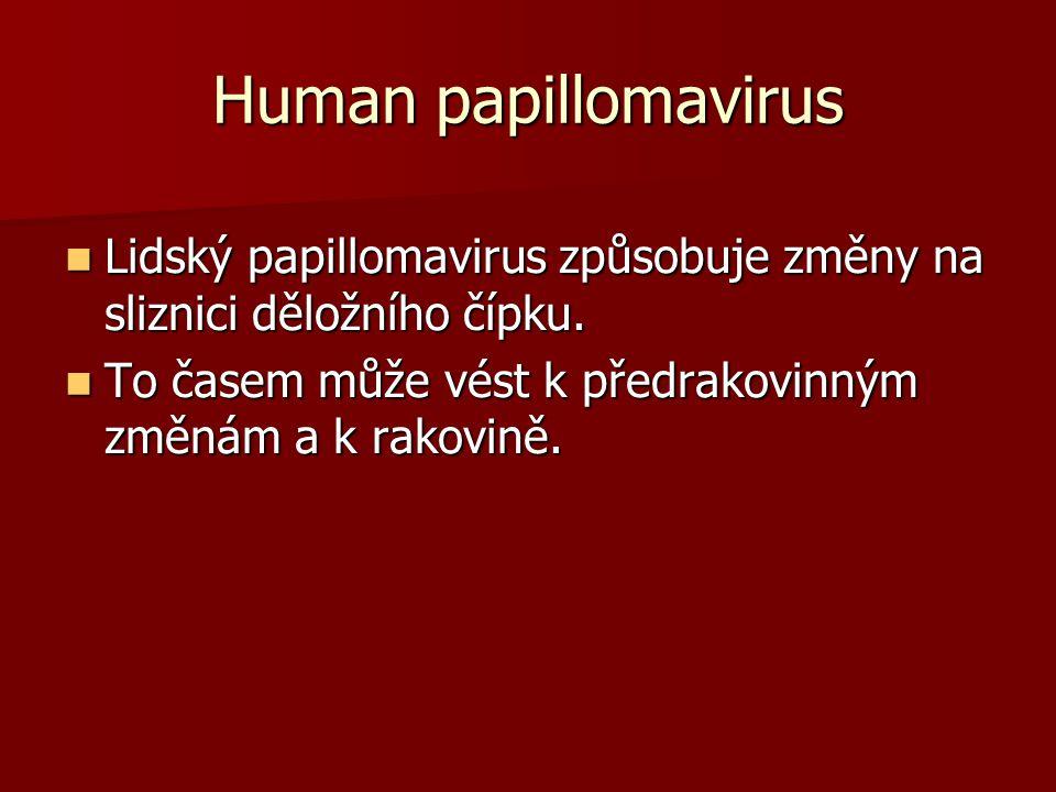 Human papillomavirus Lidský papillomavirus způsobuje změny na sliznici děložního čípku.