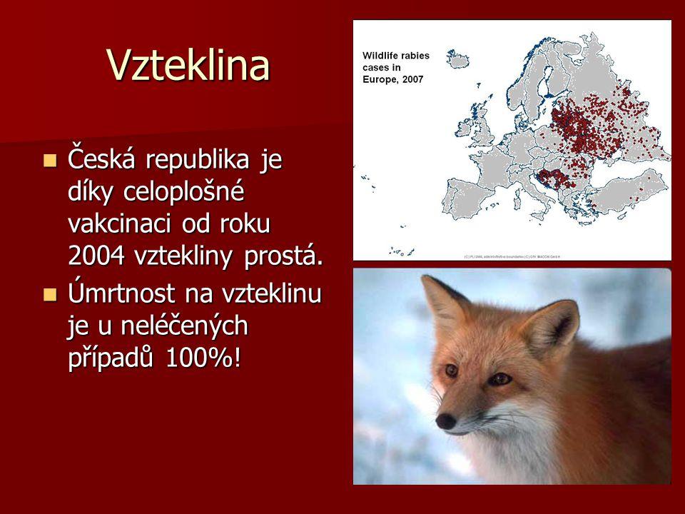 Vzteklina Česká republika je díky celoplošné vakcinaci od roku 2004 vztekliny prostá.