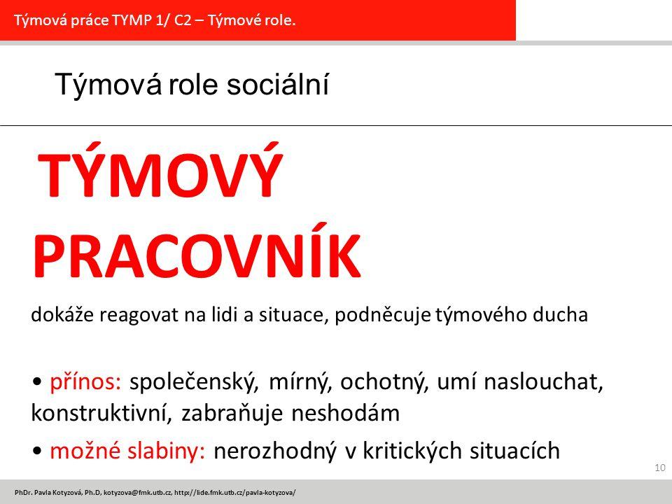Týmová role sociální TÝMOVÝ PRACOVNÍK