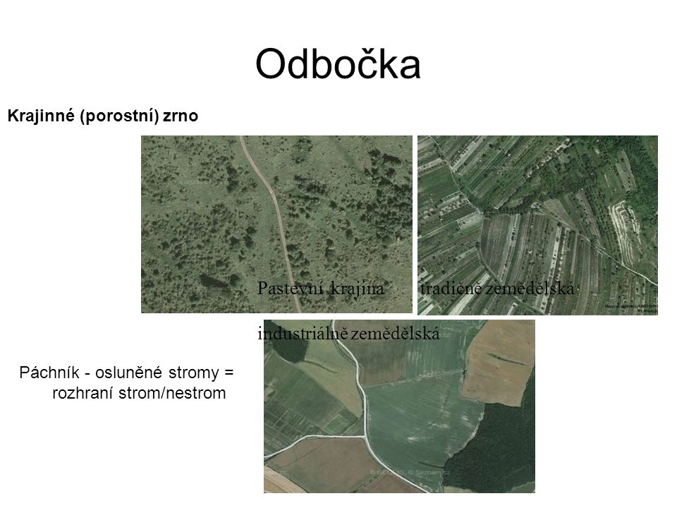 Odbočka Pastevní krajina tradičně zemědělská industriálně zemědělská