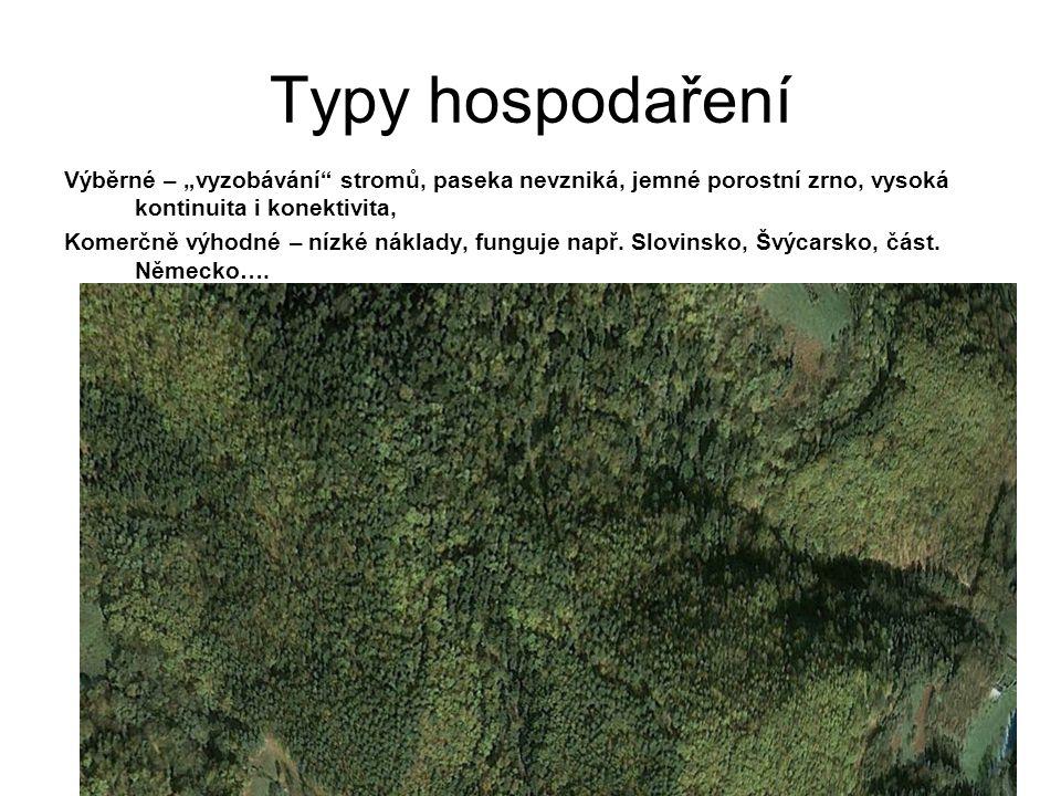 """Typy hospodaření Výběrné – """"vyzobávání stromů, paseka nevzniká, jemné porostní zrno, vysoká kontinuita i konektivita,"""