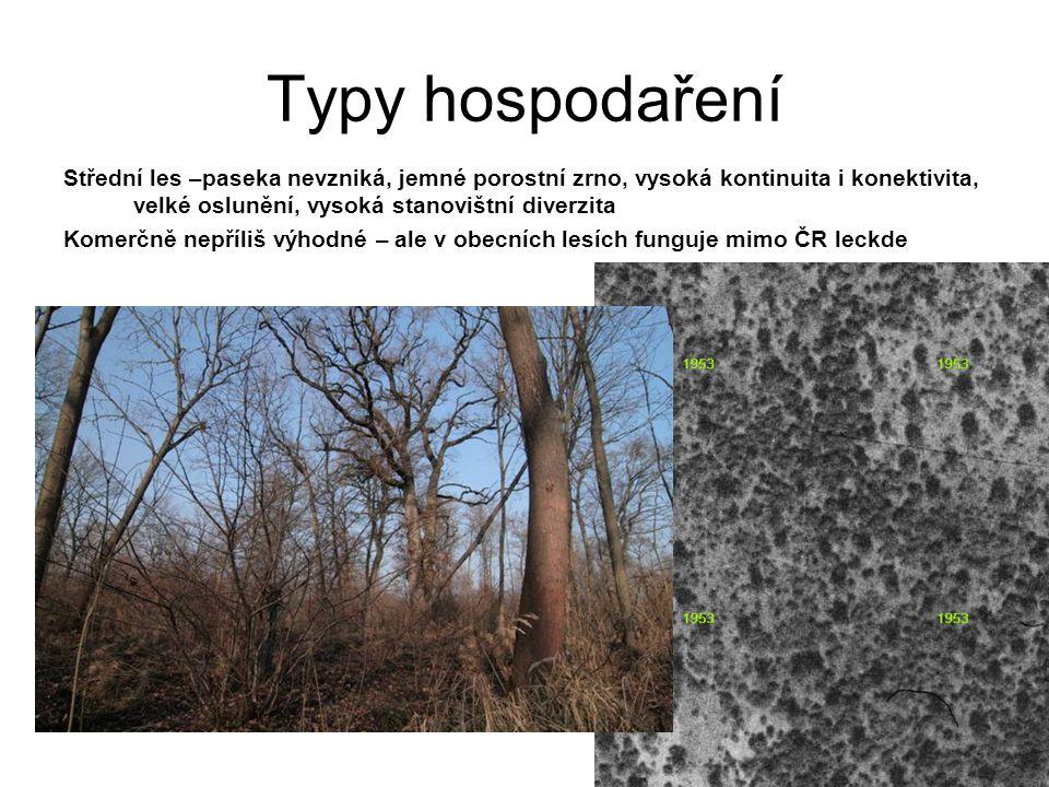 Typy hospodaření Střední les –paseka nevzniká, jemné porostní zrno, vysoká kontinuita i konektivita, velké oslunění, vysoká stanovištní diverzita.