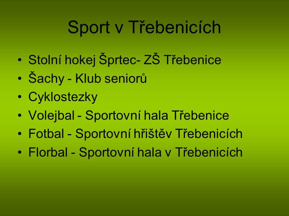 Sport v Třebenicích Stolní hokej Šprtec- ZŠ Třebenice