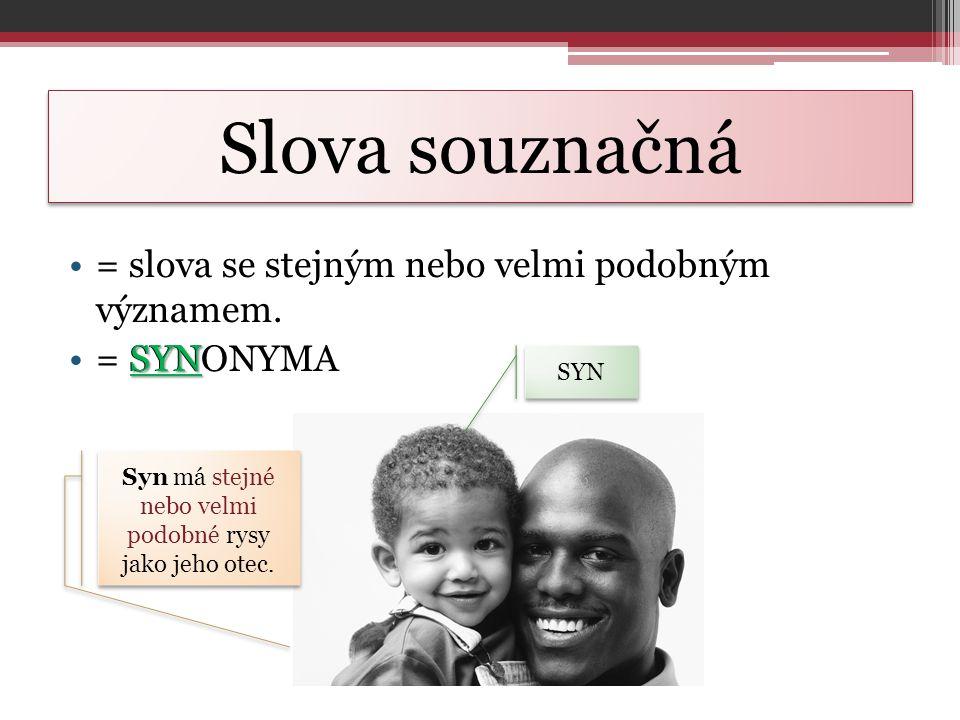Syn má stejné nebo velmi podobné rysy jako jeho otec.