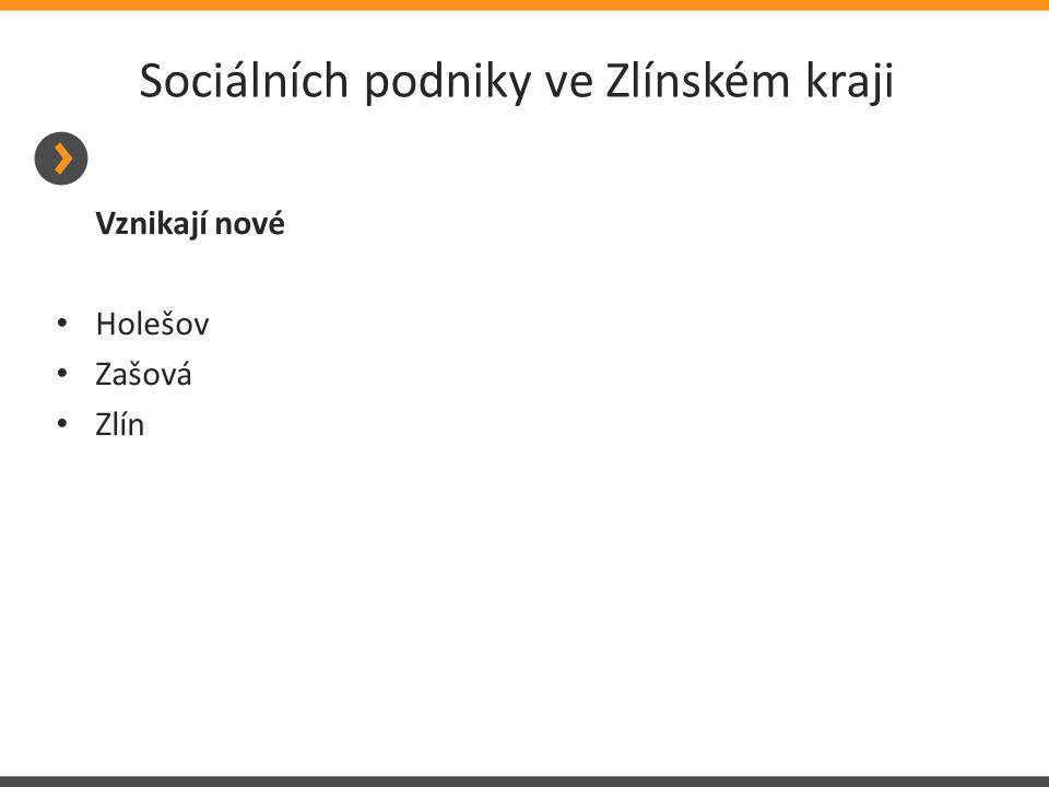 Sociálních podniky ve Zlínském kraji