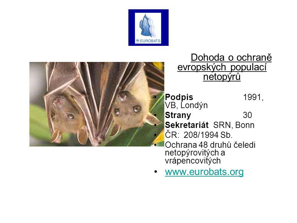 Dohoda o ochraně evropských populací netopýrů