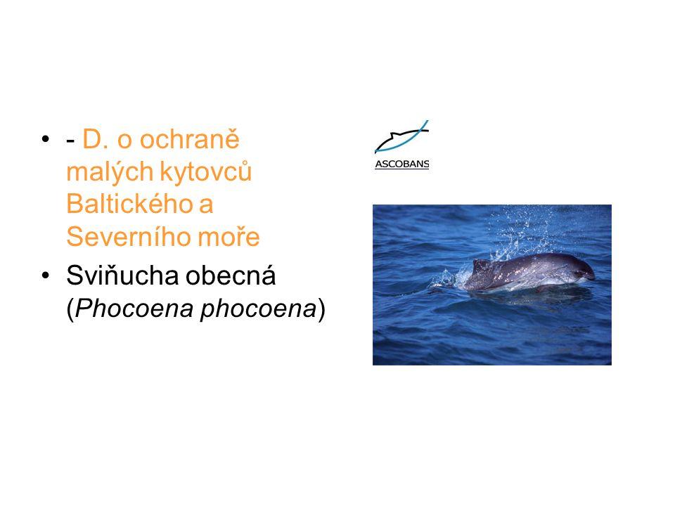 - D. o ochraně malých kytovců Baltického a Severního moře