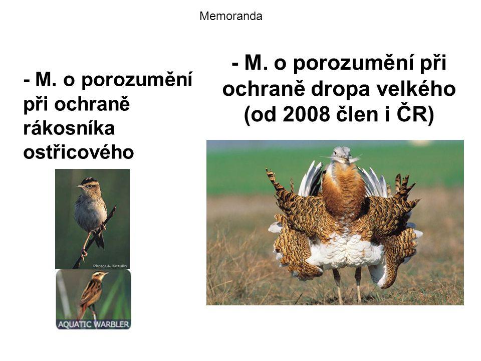 - M. o porozumění při ochraně dropa velkého (od 2008 člen i ČR)