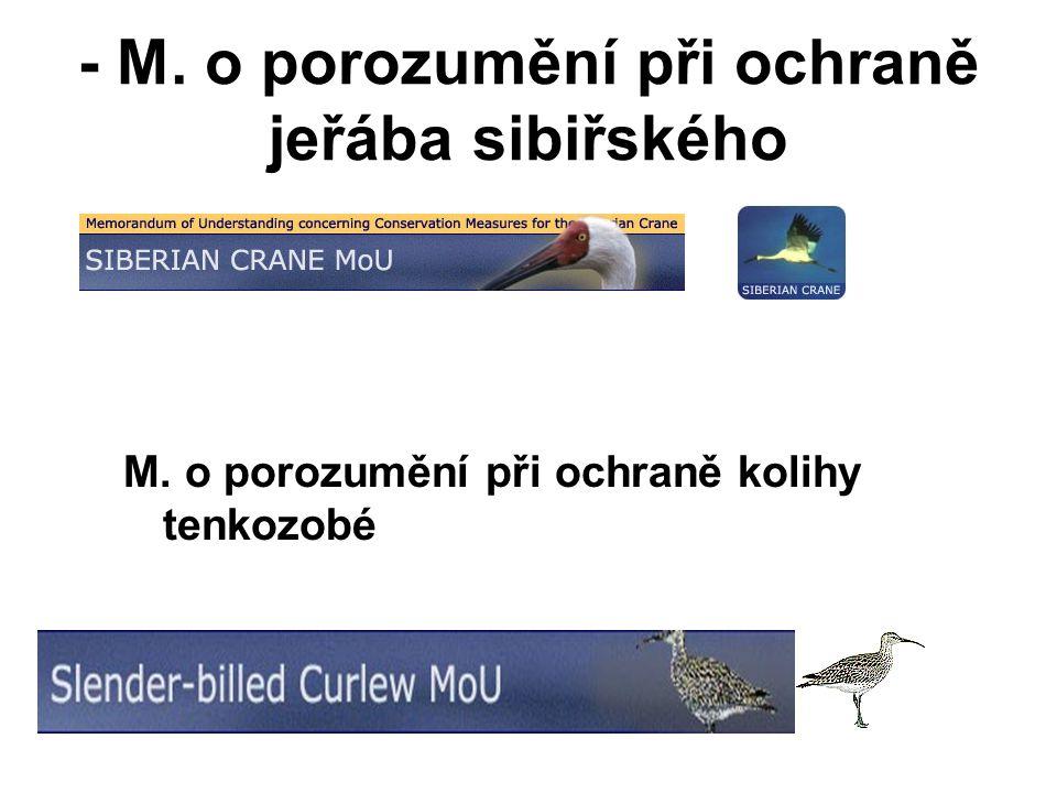 - M. o porozumění při ochraně jeřába sibiřského