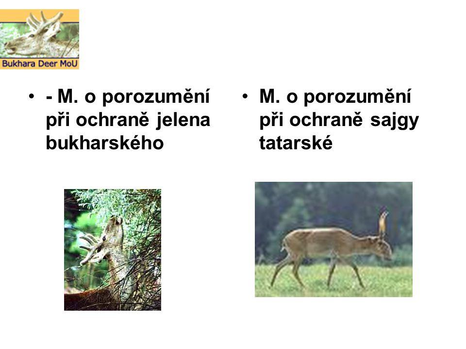 - M. o porozumění při ochraně jelena bukharského