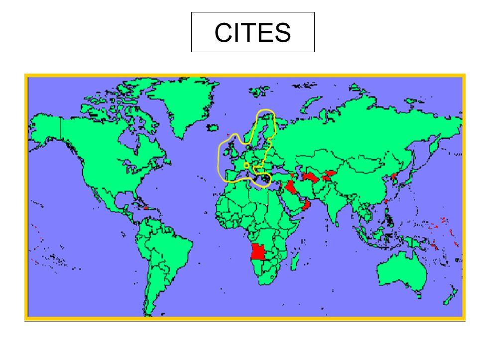 CITES Nesmluvní strany (2. 2005): Haiti Angola