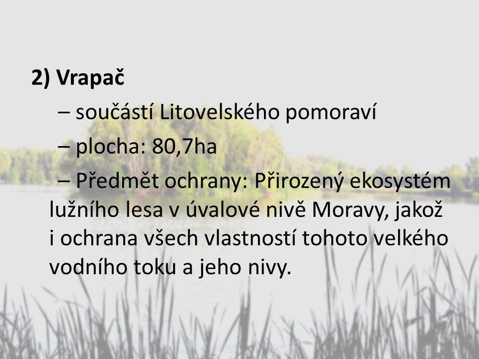 2) Vrapač – součástí Litovelského pomoraví – plocha: 80,7ha – Předmět ochrany: Přirozený ekosystém lužního lesa v úvalové nivě Moravy, jakož i ochrana všech vlastností tohoto velkého vodního toku a jeho nivy.