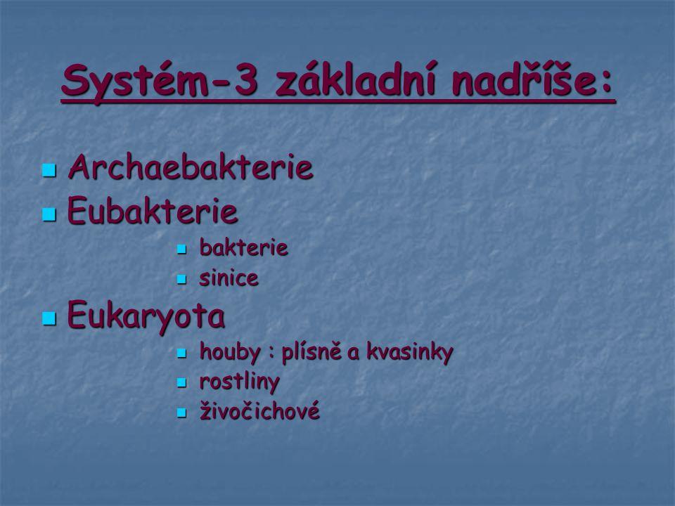 Systém-3 základní nadříše:
