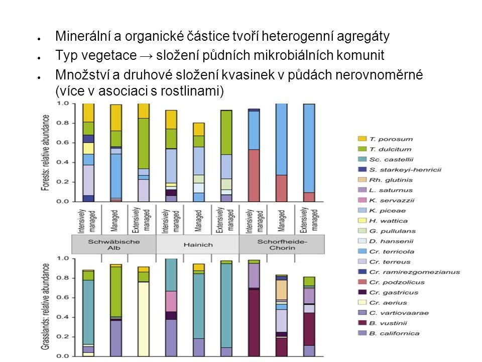 Minerální a organické částice tvoří heterogenní agregáty