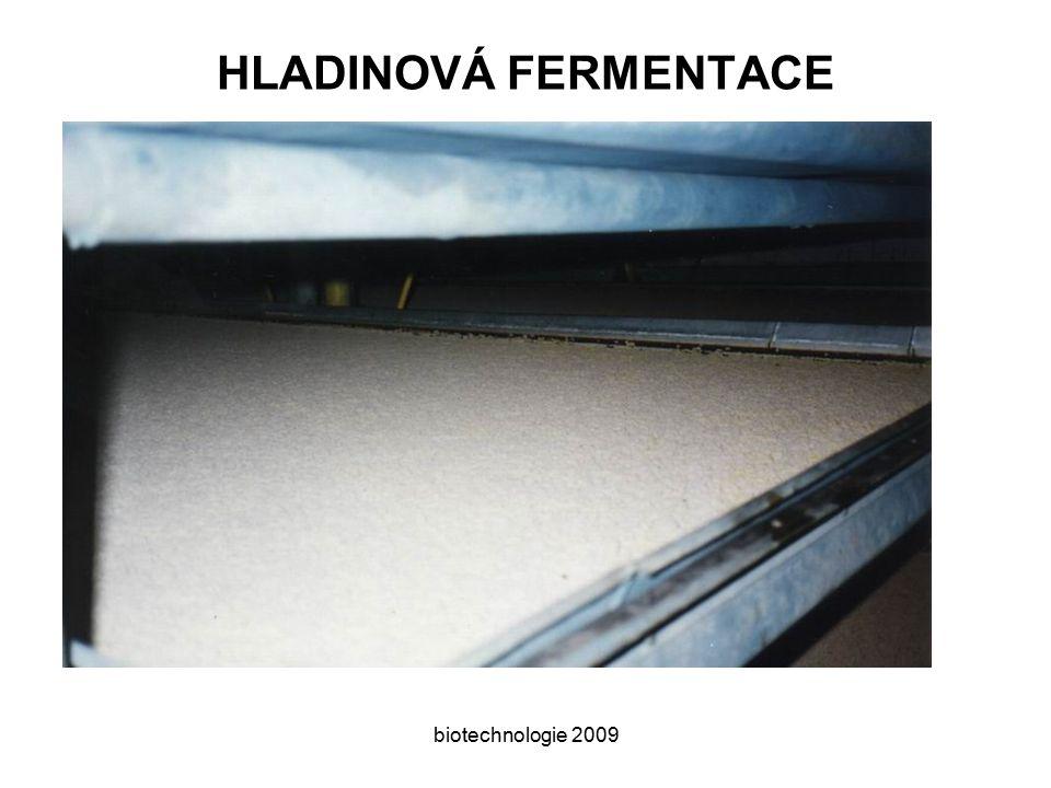 HLADINOVÁ FERMENTACE biotechnologie 2009