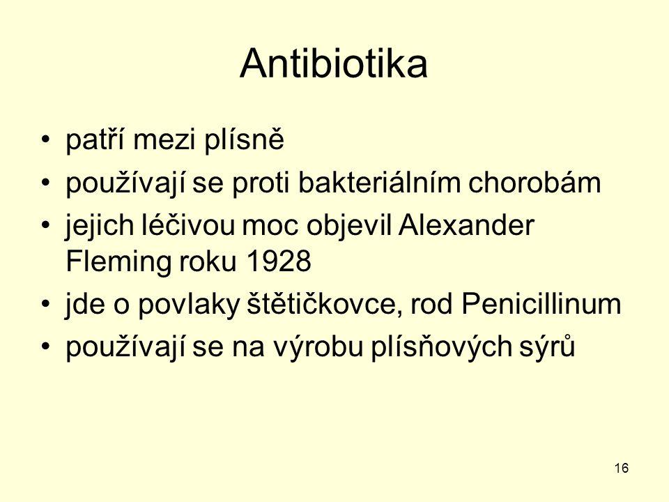Antibiotika patří mezi plísně používají se proti bakteriálním chorobám