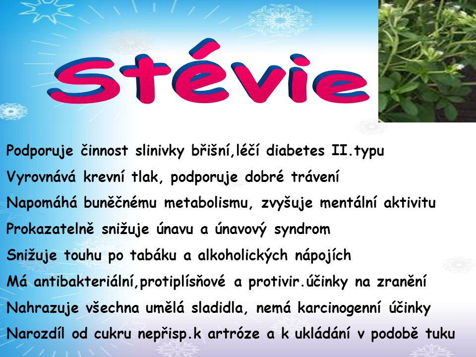 Stévie Podporuje činnost slinivky břišní,léčí diabetes II.typu