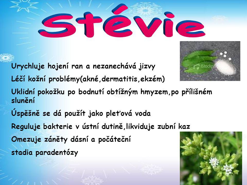 Stévie Urychluje hojení ran a nezanechává jizvy