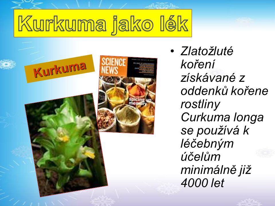 Kurkuma jako lék Zlatožluté koření získávané z oddenků kořene rostliny Curkuma longa se používá k léčebným účelům minimálně již 4000 let.