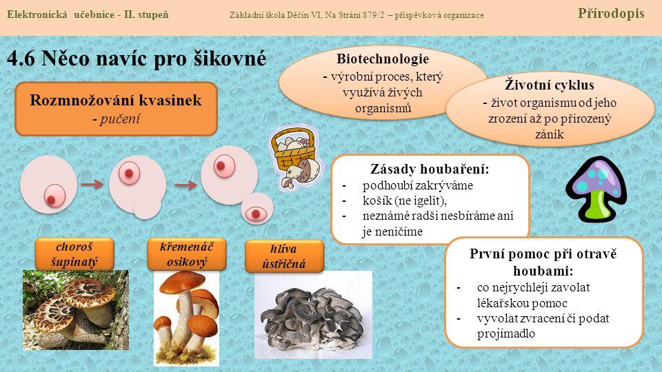 Rozmnožování kvasinek První pomoc při otravě houbami: