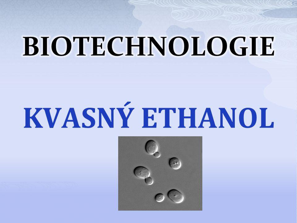 BIOTECHNOLOGIE KVASNÝ ETHANOL