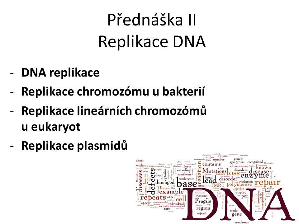Přednáška II Replikace DNA