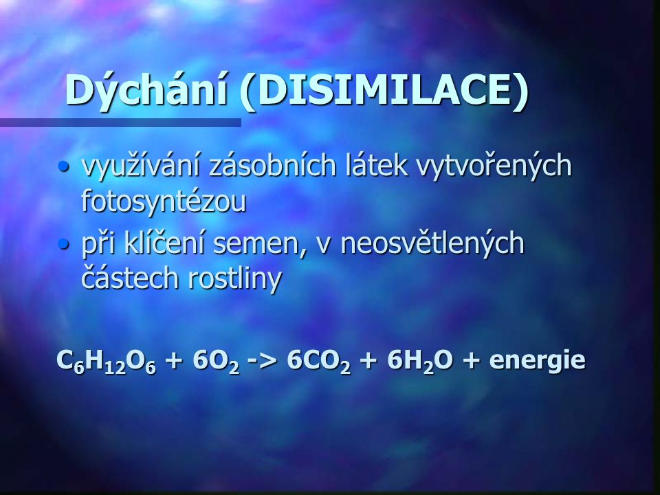 Dýchání (DISIMILACE) využívání zásobních látek vytvořených fotosyntézou. při klíčení semen, v neosvětlených částech rostliny.