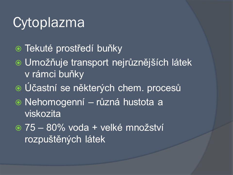 Cytoplazma Tekuté prostředí buňky