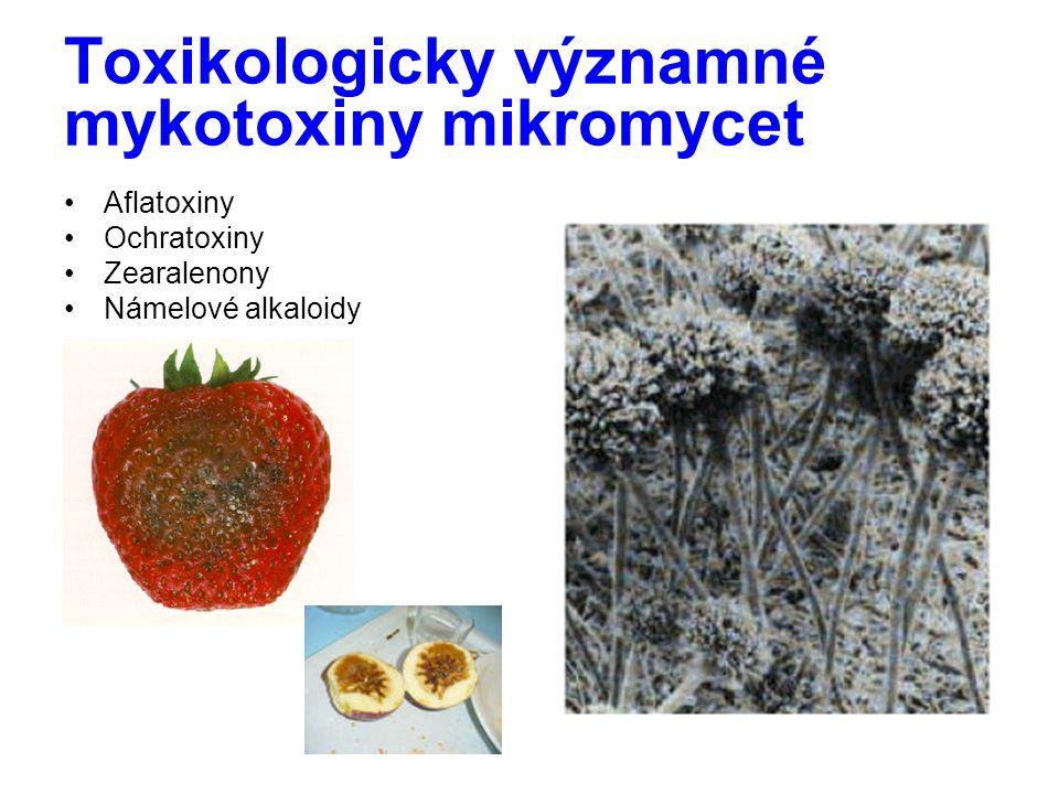 Toxikologicky významné mykotoxiny mikromycet