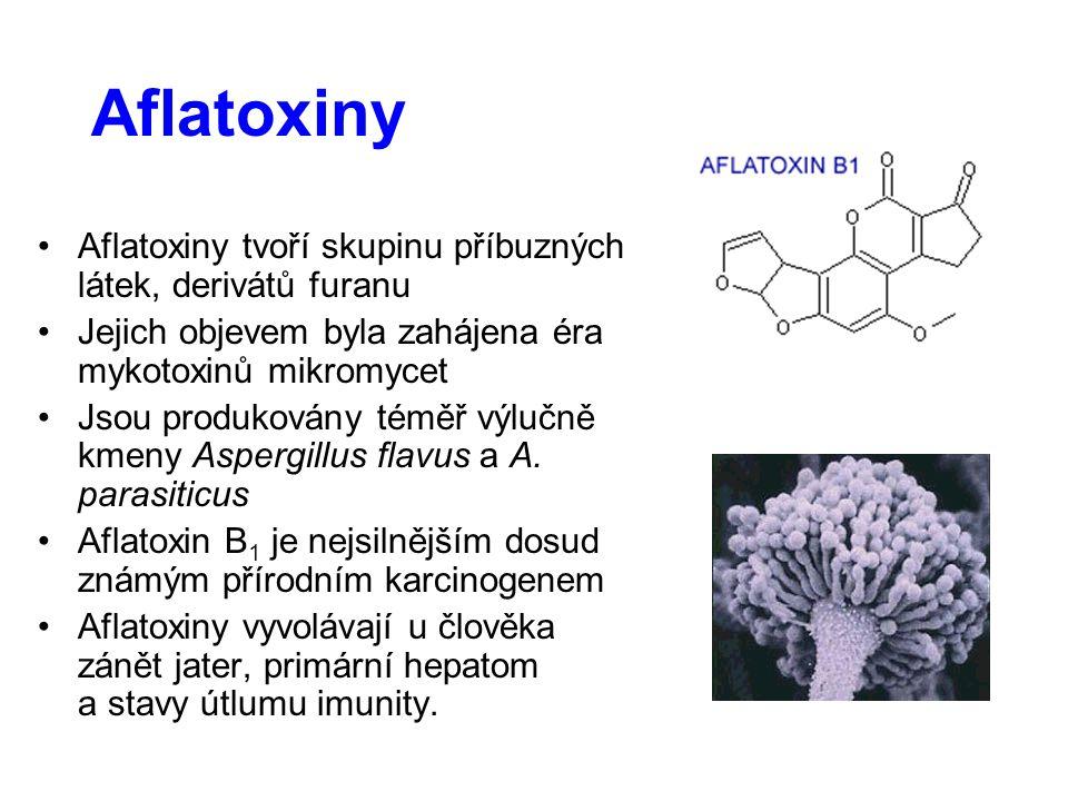 Aflatoxiny Aflatoxiny tvoří skupinu příbuzných látek, derivátů furanu