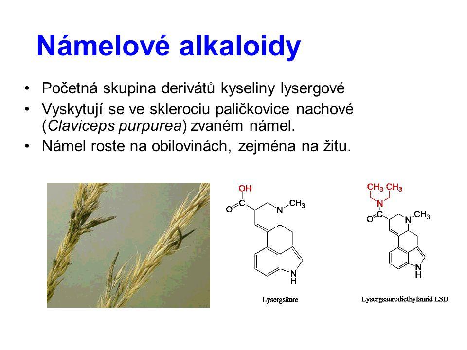 Námelové alkaloidy Početná skupina derivátů kyseliny lysergové
