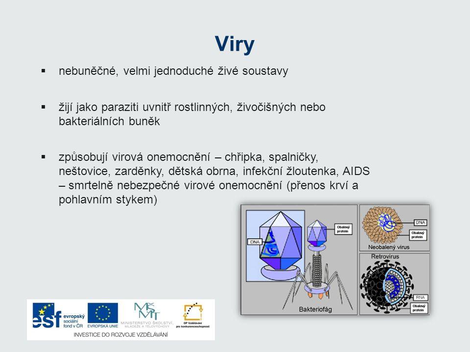 Viry nebuněčné, velmi jednoduché živé soustavy