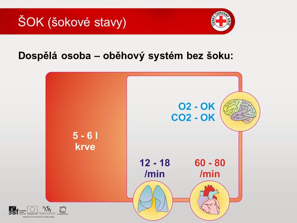 ŠOK (šokové stavy) Dospělá osoba – oběhový systém bez šoku: 4 4