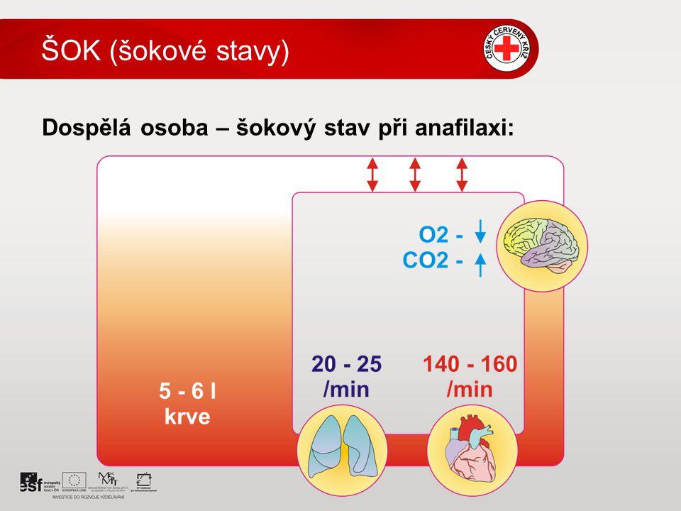 ŠOK (šokové stavy) Dospělá osoba – šokový stav při anafilaxi: 6 6