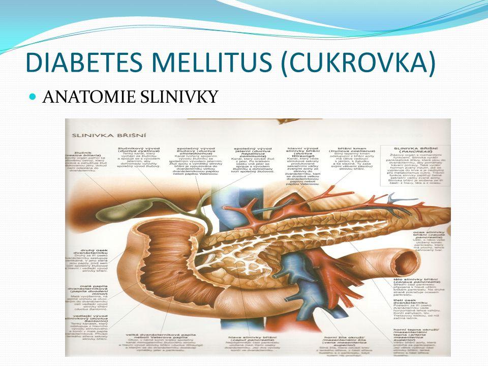 DIABETES MELLITUS (CUKROVKA)