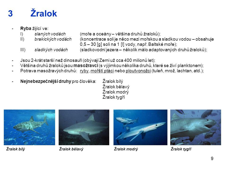 3 Žralok Ryba žijící ve: I) slaných vodách (moře a oceány – většina druhů žraloků);