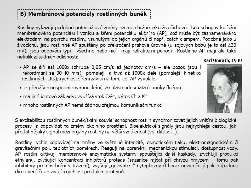B) Membránové potenciály rostlinných buněk