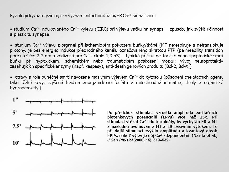 Fyziologický/patofyziologický význam mitochondriální/ER Ca2+ signalizace:
