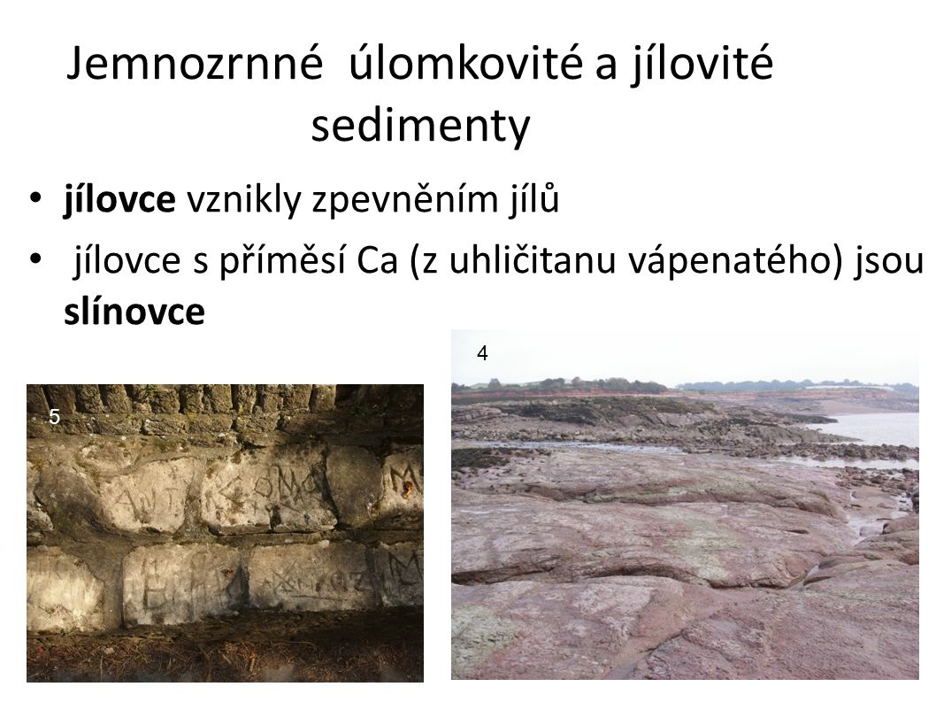 Jemnozrnné úlomkovité a jílovité sedimenty