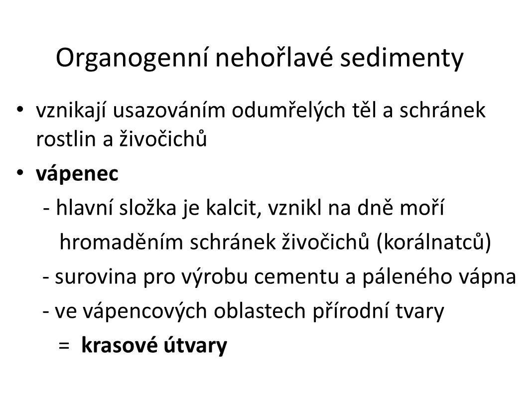 Organogenní nehořlavé sedimenty