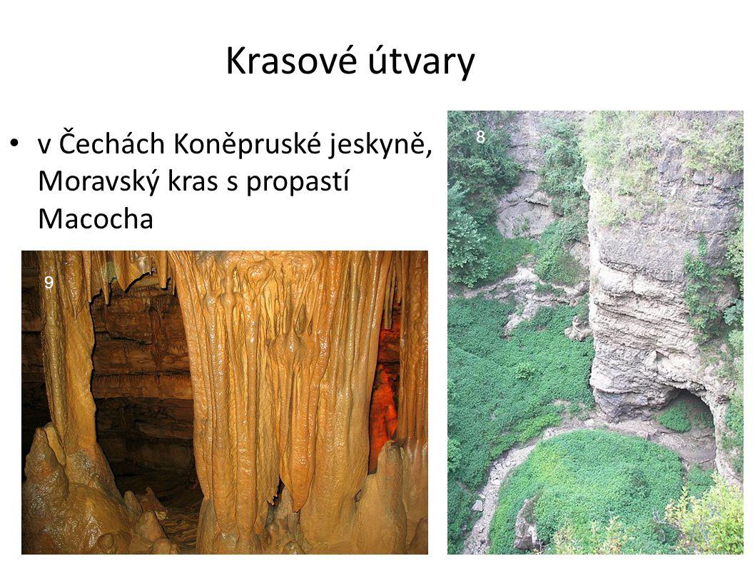 Krasové útvary v Čechách Koněpruské jeskyně, Moravský kras s propastí