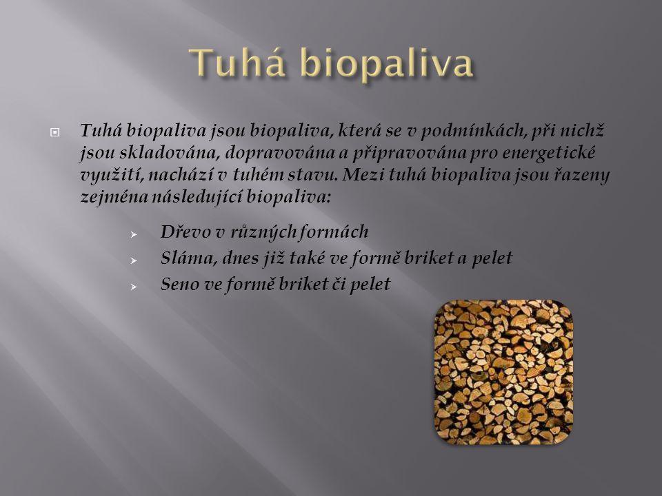 Tuhá biopaliva