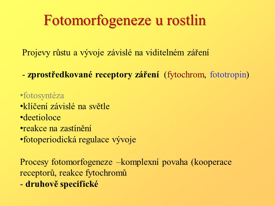 Fotomorfogeneze u rostlin