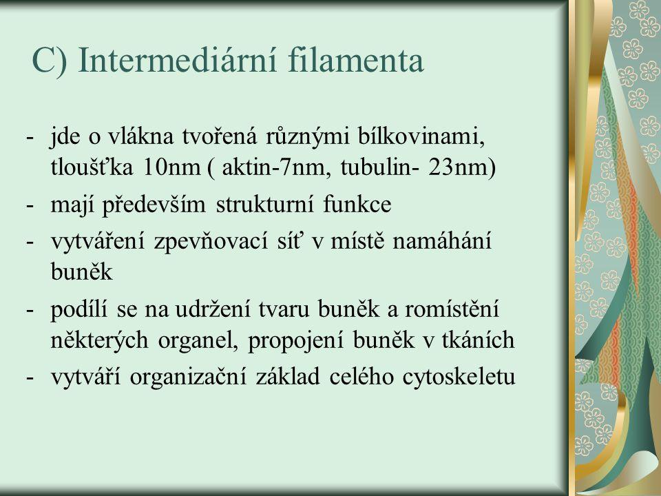 C) Intermediární filamenta