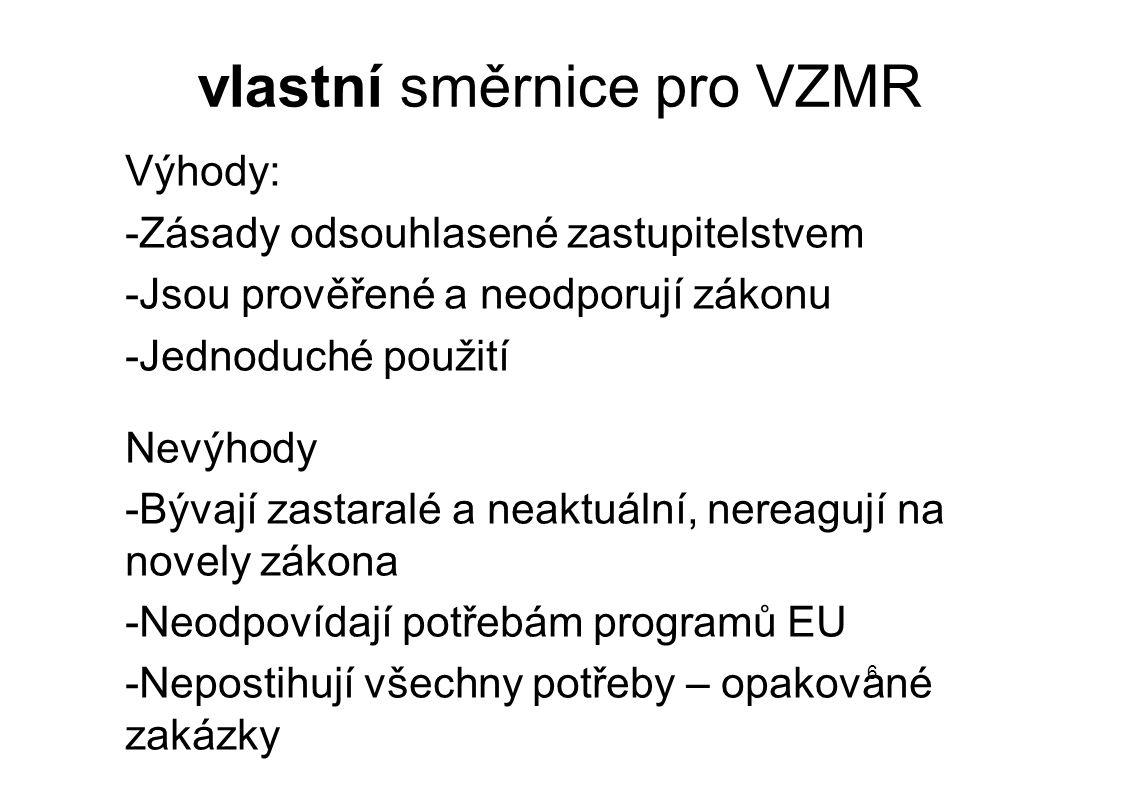 vlastní směrnice pro VZMR