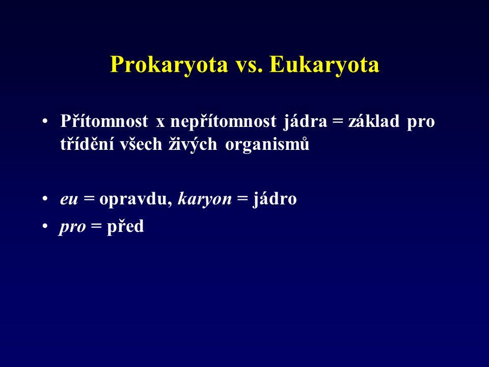 Prokaryota vs. Eukaryota
