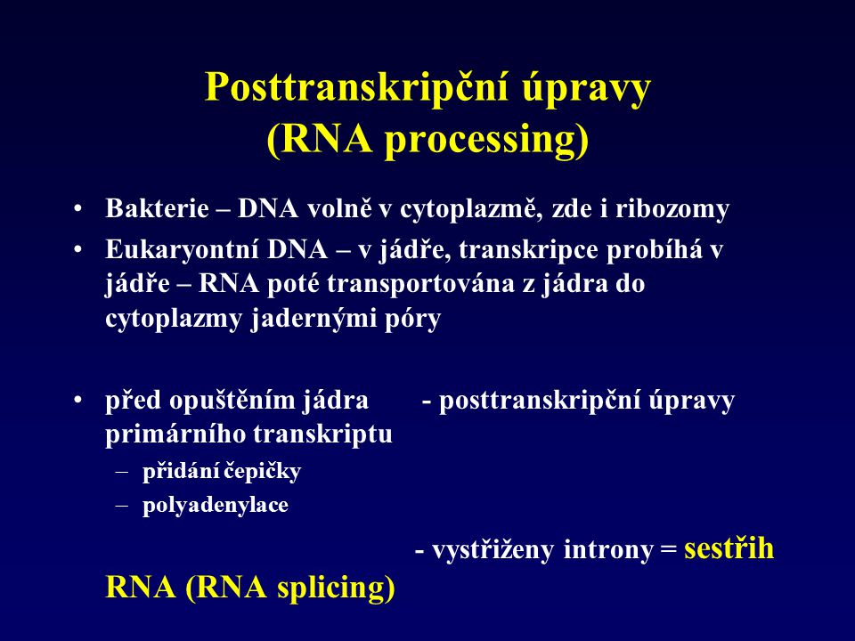 Posttranskripční úpravy (RNA processing)